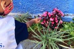 Plantio-de-mudas-na-Creche-Amor-Perfeito-3